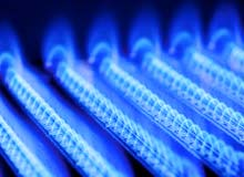 Photograph of blue natural gas flames